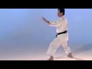 Enoeda & Otta Sensei Kata 1 - 10 Heian Shodan - Jion