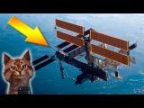 Наука детям про космос | Международная космическая станция | Семен Ученый