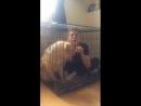 Илья Белов: Меня закрыли в клетке!