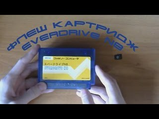 Вспомнить всё. Флеш картридж Everdrive N8.