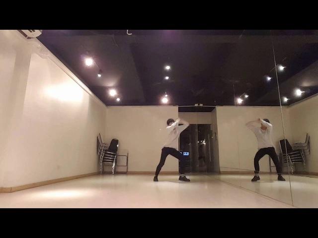 BTS (방탄소년단) - BUTTERFLY Dance Cover