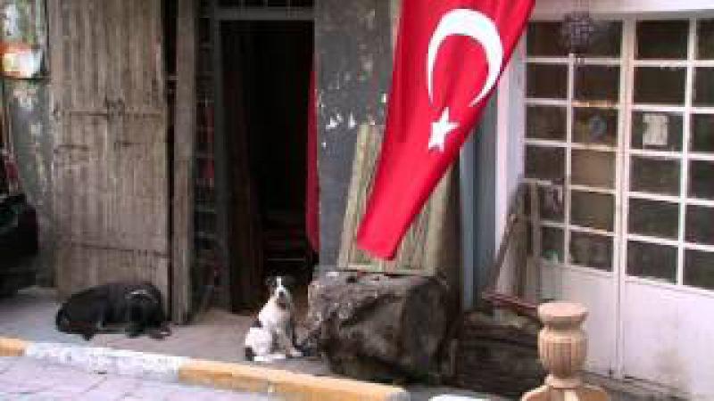 Потерянный город Орхана Памука Orhan Pamuk