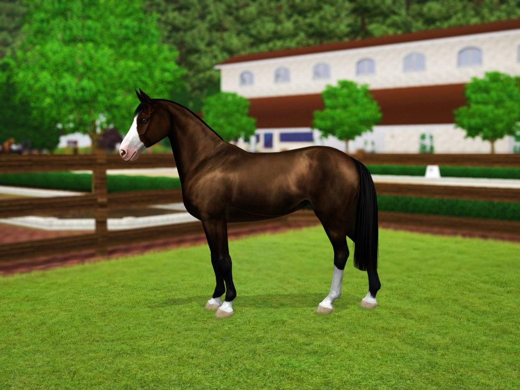 Регистрация лошадей в RHF 2 - Страница 3 GtzJMZhsJyU