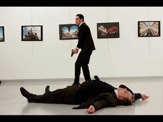 Убийство Российского посла. Психологический разбор поведения убийцы