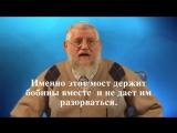 Печать Бога в каждой клетке )))