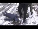В Макеевке правоохранители задержали разбойников по «горячим следам»