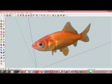 How To Model A Fish In SketchUp ( Easy Photo Texture)