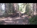 Озеро Нахты Возвращение 1