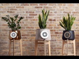 Clairy The Most Amazing Natural Air Purifier