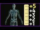 КАК УВЕЛИЧИТЬ РОСТ. 10 см за 2 месяца!