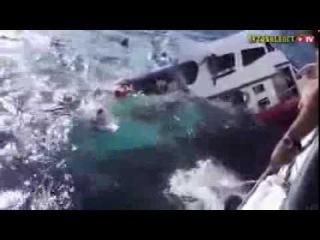 Дайвер снял крушение судна в Таиланде / Diver took the wreck in Thailand