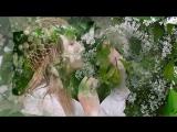 Белая черемуха. Олег Алябин
