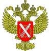 Выписка из ЕГРП Онлайн по РФ от 10 минут