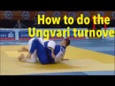 How to do the Ungvari turnover