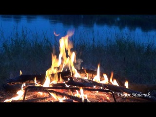 Рассвет на берегу реки. Костер. Дрова горят. Огонь на природе. Звук костра. Треск ...