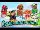Мистер Макс и мисс Кэти новые серии семья пальчиков Щенячий патруль песня на русском для детей