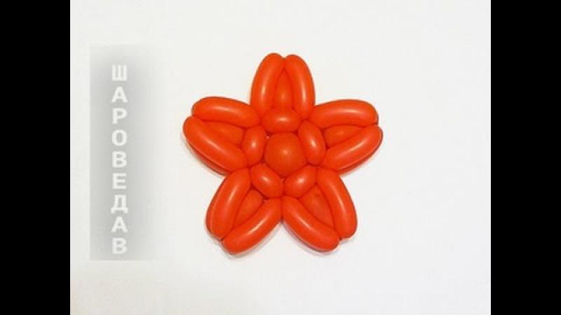 Звезда из шаров Star of balloons.