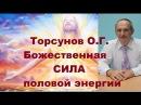 Торсунов О.Г. Божественная СИЛА половой энергии.
