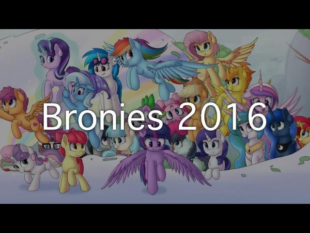 Bronies 2016