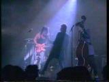 Stray Cats Blue Suede Shoes with Eddie Van Halen Steve Miller B B King Les Paul David Gilmour Stanley Jordan Jon Hammer Waylon Jennings