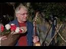 70 летие Александра Мирзаяна в Гнезде глухаря часть 1