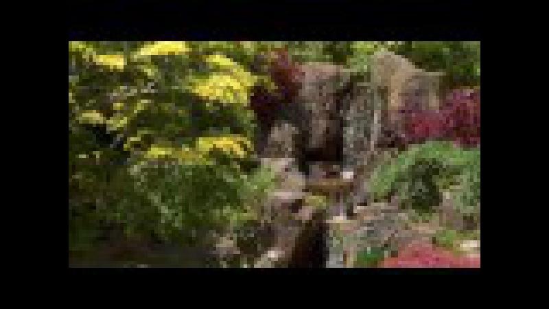 Копия видео Мое измененное видео