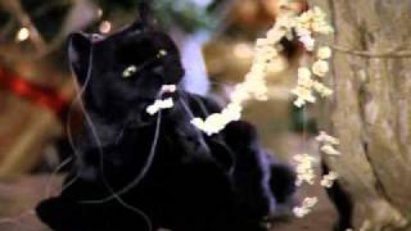 Сабрина - маленькая ведьма. ЛУЧШИЕ ШУТКИ. 3 сезон