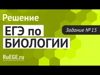 Решение демоверсии ЕГЭ по биологии 2016 | Задание 15. [Подготовка к ЕГЭ (RuEGE.ru)]