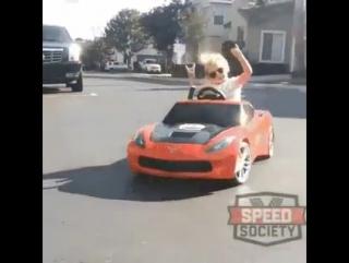 Даже на настоящем авто мы не будем так круты как эта малышка