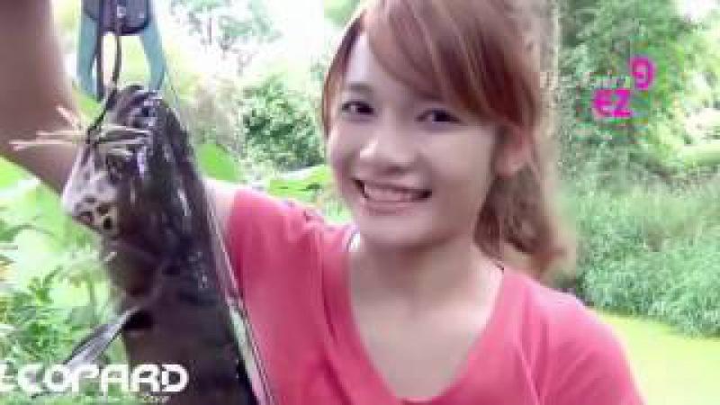 Güzel kız pirinç tarlasından balık topluyor