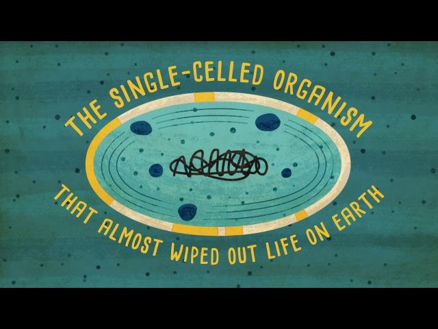 Как одноклеточный организм почти уничтожил жизнь на Земле