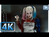 Harley Quinn Elevator Scene  Building Fight  Suicide Squad (2016)  4K ULTRA HD