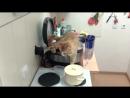 Кот нассал в мультиварку