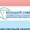Большой Совет | Ресурсный центр НКО Воронеж