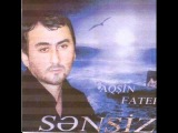 Aksin Fateh Elsen Xezer - Dusende yadima