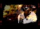 JGRXXN feat Chiiirp -9inx 4 Album Version