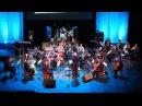 IP Orchestra - Лесник КиШ