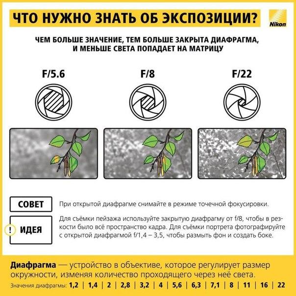 Фото №425891637 со страницы Паши Кравченко