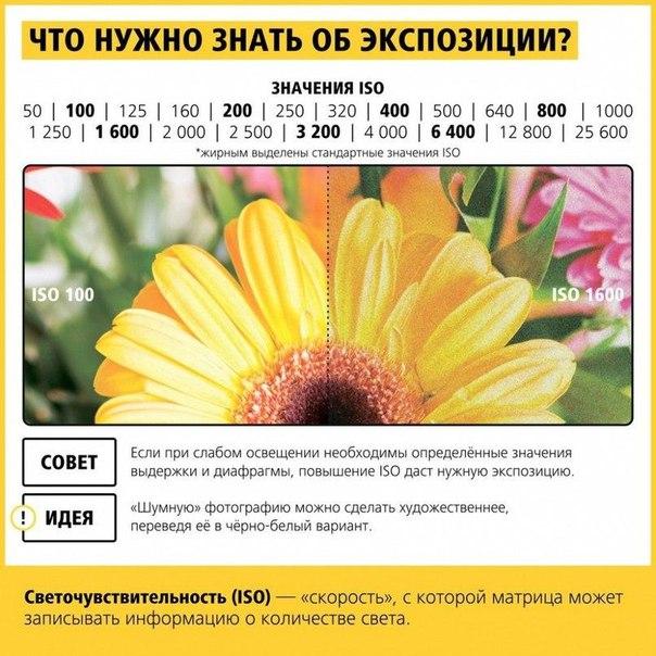 Фото №425891639 со страницы Паши Кравченко
