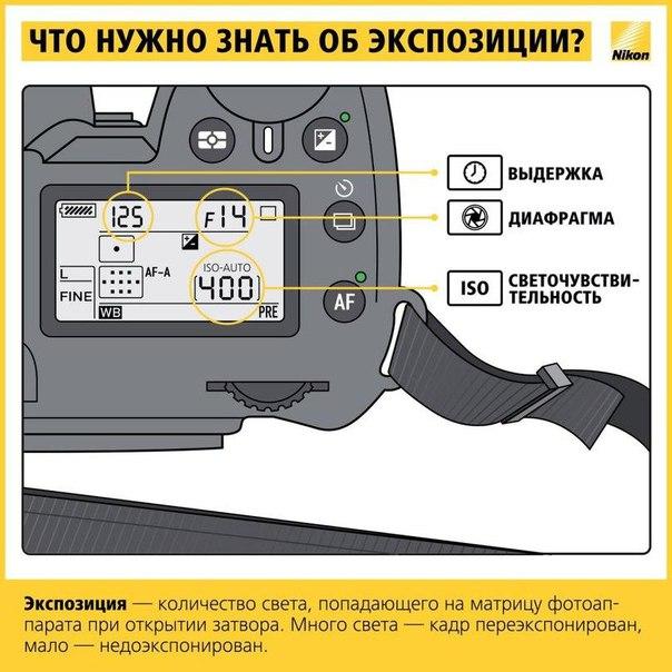Фото №425891641 со страницы Паши Кравченко