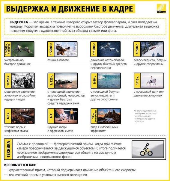 Фото №425891642 со страницы Паши Кравченко