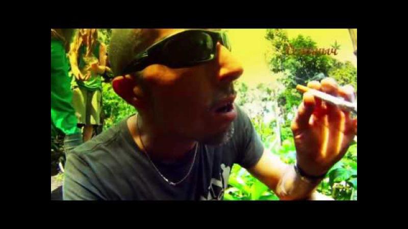 Strain Hunters - Экспедиция в Тринидад и Сент-Винсент на русском. Субтитры от магазина Семяныч