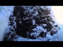 Американская подлодка замерзла в Арктике Подняли настроение