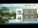 Урок китайского языка 1 начальный уровень 入门上 Простое предложение из двух слов