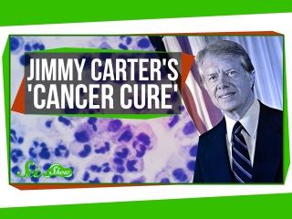 Исцеление от рака Джимми Картера | Озвучка DeeAFilm