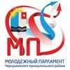 Молодежный парламент Чернушинского района