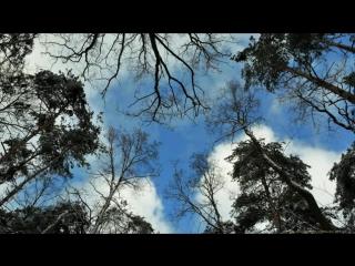 Prokofiev - Le pas dacier, Op 41 - Rozhdestvensky