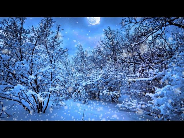 Футаж Снегопад в лесу Snowfall HD