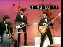 The Standells - Dirty Water _ Why Pick On Me