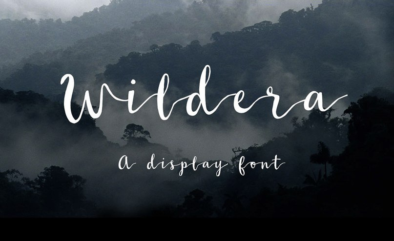 шрифт Wildera